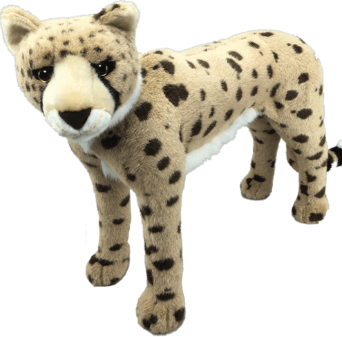 "Our cheetah Cinnabar, is 23"" tall (that's basically 2 feet)! She is sturdy, fluffy and well-crafted to stand the test of time. Most importantly, she is super-cute, yes, we had to say it again. Her unusual name means mercury which is so fitting, as cheetahs are like quicksilver in terms of speed."